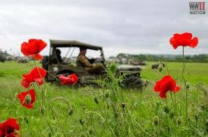 DFVS-Poppy-Field-US-Jeep_